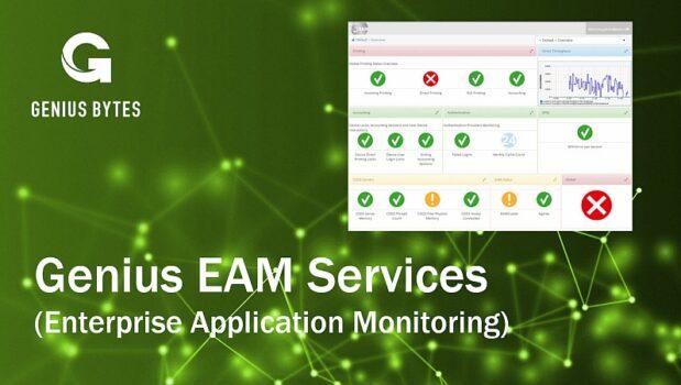 Genius EAM Services